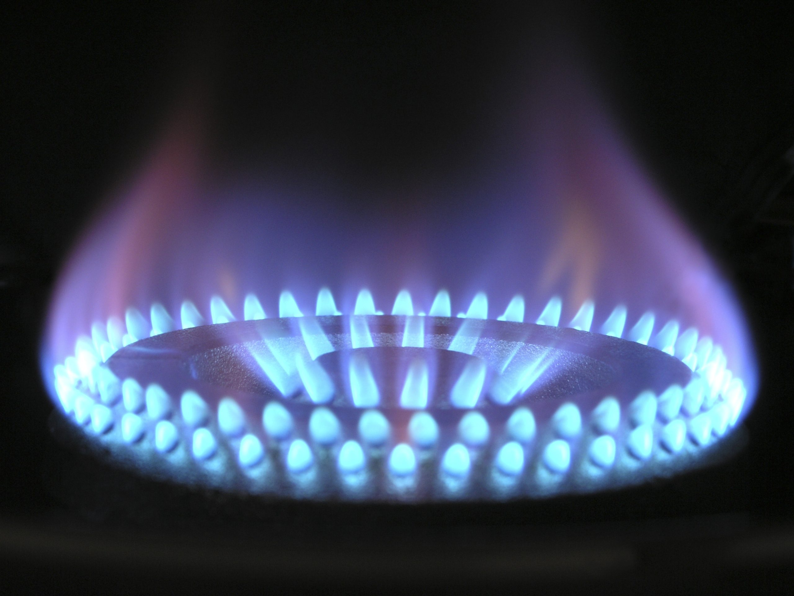 5 Best Gas Stove You Will Love